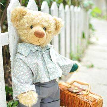 台湾泰迪熊协会