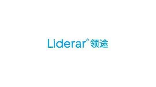 领途教育咨询(北京)有限公司