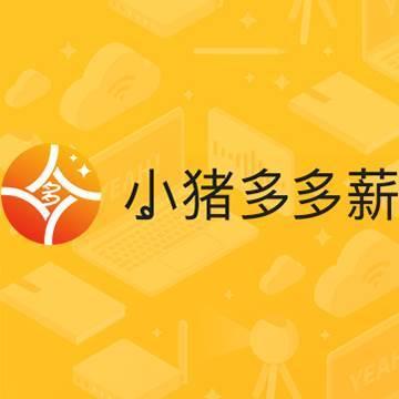 宁波小猪多多新信息科技有限公司